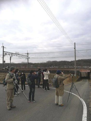 19野鳥観察会三田市2020年2月.jpg