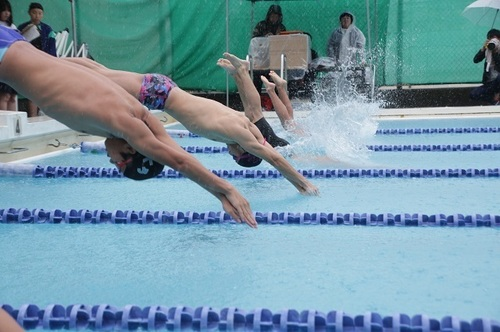 397A4095(2)水泳.jpg